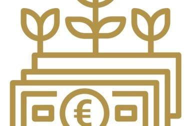 Здраве финансије и економски развој