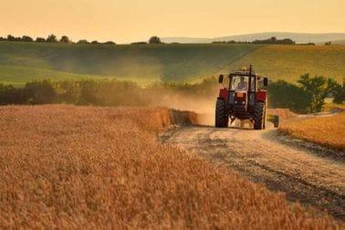 Šta treba da sadrži zahtjev za zakup poljoprivrednog zemljišta