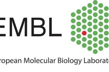 Evropska laboratorija za molekularnu biologiju