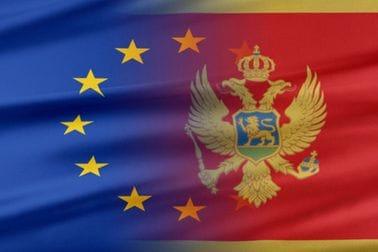EU i MNE