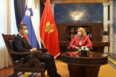 Odbrambena saradnja Crne Gore i Slovenije najbolji primjer prijateljskih i savezničkih odnosa